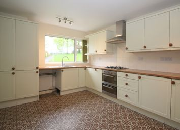 Thumbnail 3 bed terraced house to rent in Chestnut Walk, Alresford