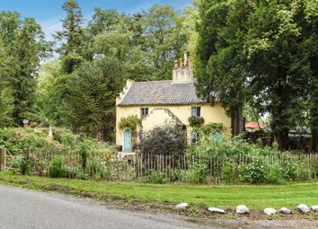 Thumbnail 4 bed cottage for sale in Letton, Thetford