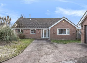 Thumbnail 3 bed detached bungalow for sale in Willhay Lane, Axminster, Devon