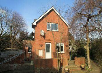 Thumbnail 4 bed detached house for sale in Whiteley Bank Cottage Canteen Road, Whiteley Bank, Ventnor, Isle Of Wight