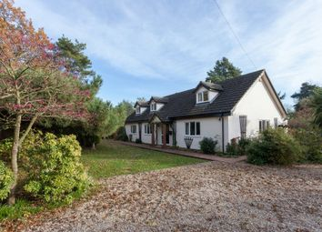 Thumbnail 5 bed detached house for sale in Wayford, Norwich