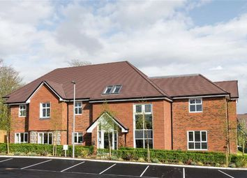 Thumbnail 2 bed property for sale in Farnham Road, Liss, Hampshire