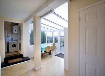 Thumbnail 4 bed semi-detached house to rent in Enfield Road, Norwich