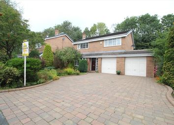 Thumbnail 4 bed property to rent in Long Croft Meadow, Chorley