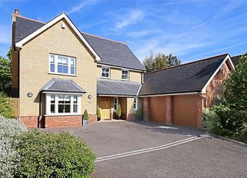 Thumbnail 5 bedroom detached house for sale in Dovedale, High Wych, Sawbridgeworth, Hertfordshire