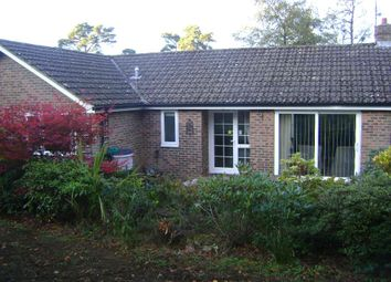 Thumbnail 3 bed bungalow to rent in Grovers Gardens, Wood Road, Hindhead