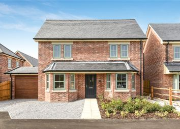 Thumbnail 4 bed detached house for sale in Solomons Lane, Shirrell Heath, Southampton, Hampshire