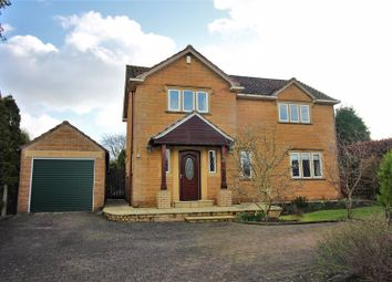 Thumbnail 3 bed detached house for sale in Trotts Lane, Horton, Near Ilminster