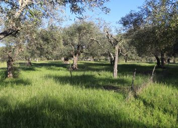 Thumbnail Land for sale in Alcoutim E Pereiro, Alcoutim E Pereiro, Alcoutim
