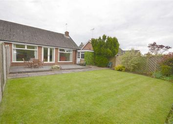 Thumbnail 2 bed semi-detached bungalow to rent in The Paddock, Uttoxeter Road, Stone