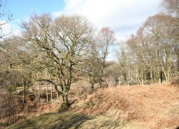 Thumbnail Land for sale in Bracken Wood, Gatehouse Of Fleet, Castle Douglas