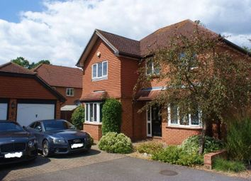 Thumbnail 4 bed detached house to rent in Cleopatra Place, Warfield, Bracknell