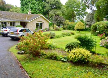 Thumbnail 3 bed detached bungalow for sale in Brewery Lane, Holcombe