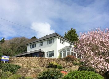 Thumbnail 4 bed detached house for sale in Three Cliffs, Penmaen, Gower