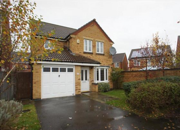 Thumbnail 3 bed detached house to rent in Mandarin Way, Alvaston, Derby