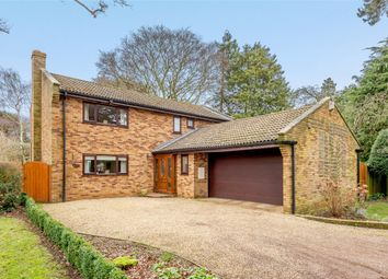 4 bed detached house for sale in The Avenue, Dallington, Northampton, Northamptonshire NN5