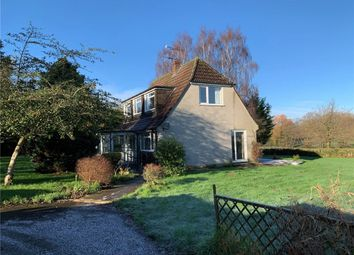 Thumbnail 4 bedroom detached bungalow to rent in Cranes Meadow, Buckland Newton, Dorchester, Dorset