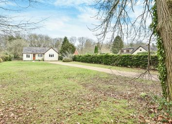 Thumbnail 3 bed detached bungalow for sale in Four Marks, Alton, Hampshire