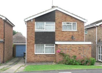 Thumbnail 4 bedroom property to rent in Needham Road, Luton