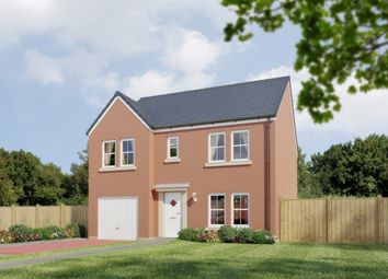 "Thumbnail 4 bedroom detached house for sale in ""The Whitecairns "" at Stable Gardens, Galashiels"