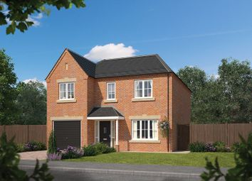 Thumbnail 4 bed detached house for sale in Applegarth, Londesborough Road, Market Weighton