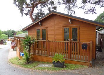 Thumbnail 2 bed bungalow to rent in Matchams Lane, Hurn, Christchurch