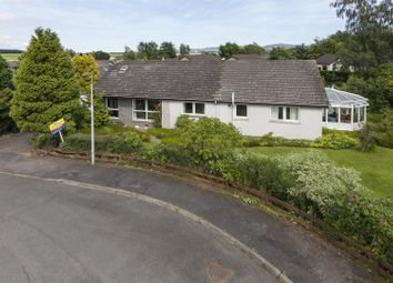 Thumbnail 5 bedroom detached bungalow for sale in Fraser Avenue, Wolfhill, Perth