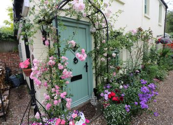 Thumbnail 2 bed cottage to rent in Havelock Place, Ash, Kent