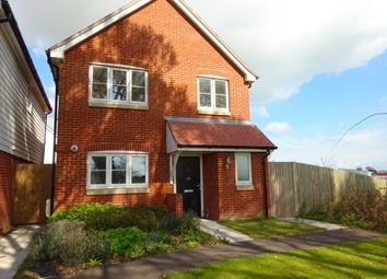 Thumbnail 4 bed detached house to rent in Church Lane, New Romney