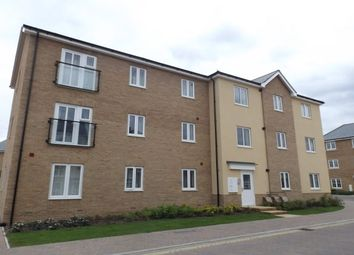 Thumbnail 2 bed flat to rent in Abbotswood Common Road, Romsey