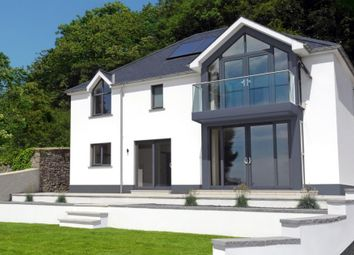 Thumbnail 4 bed detached house for sale in Llys Steffan, Llansteffan, Carmarthen