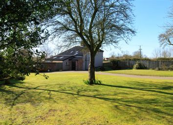Thumbnail 4 bed detached house for sale in Brooke, Norwich