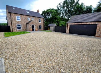 Thumbnail 6 bed property for sale in North Way, Fulstow, Louth