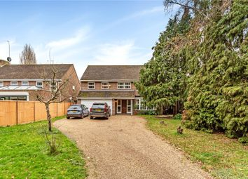 5 bed detached house to rent in Church Road, Ham, Richmond, Surrey TW10