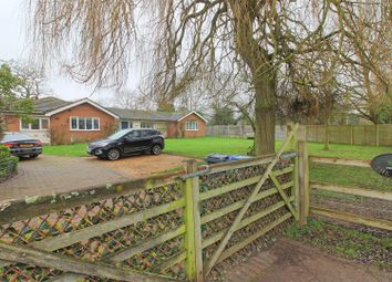 Thumbnail 4 bed detached bungalow for sale in Ginns Road, Stocking Pelham, Buntingford