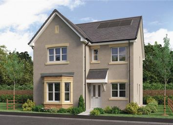 "4 bed detached house for sale in ""Mitford"" at Red Deer Road, Cambuslang, Glasgow G72"