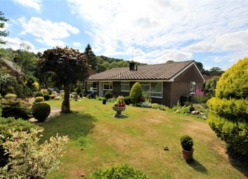 Thumbnail 4 bed detached bungalow for sale in Huckers Lane, Selborne, Hampshire