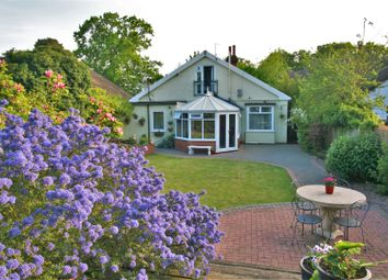Thumbnail 4 bed detached house for sale in Nacton Road, Ipswich