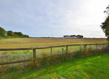 Thumbnail 3 bed detached house to rent in New Church Road, Bilsington