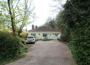 Thumbnail 4 bed detached bungalow for sale in Frating Road, Hare Green, Gt Bromley