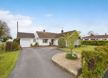Thumbnail 4 bed bungalow for sale in Andruss Drive, Dundry, Bristol