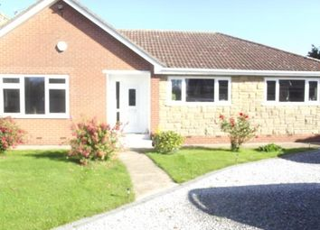 Thumbnail 3 bedroom bungalow to rent in New Village Road, Little Weighton