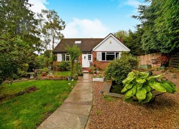 Thumbnail 4 bed bungalow for sale in Old Lodge Lane, Purley, Surrey