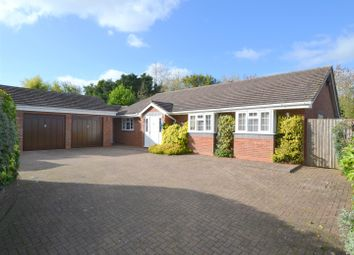 Thumbnail 4 bed detached bungalow for sale in Fromes Hill, Ledbury