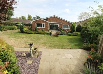Thumbnail 3 bed detached bungalow for sale in Rosehill Park, Emmer Green, Reading