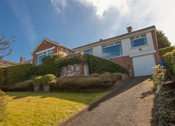 Thumbnail 3 bed terraced bungalow for sale in 30, Martello Park, Holywood