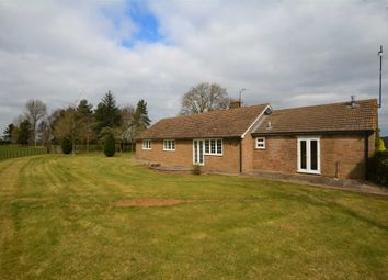 Thumbnail 3 bed bungalow to rent in Adstone, Towcester