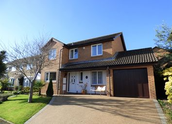 Thumbnail 4 bed detached house for sale in Hawksdown View, Seaton