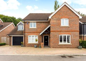 Thumbnail 5 bed detached house to rent in Salix Close, Welwyn, Hertfordshire