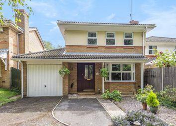 Thumbnail 4 bed detached house to rent in Owlsmoor, Sandhurst